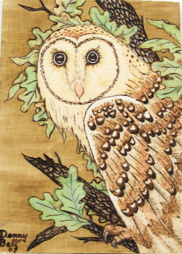 wood burned barn owl with watercolor accent