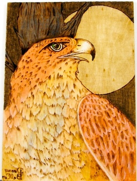 wood burned red-tail hawk with watercolor accent