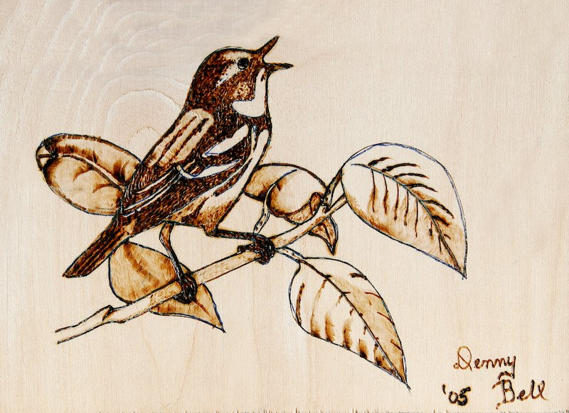 wood burned warbler on birch plywood