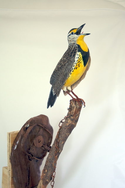 handcarved meadowlark on a trappers stake